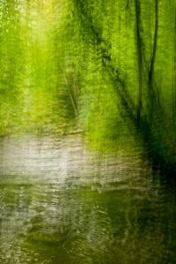 Dresserville Creek-7252