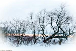 Winter-0150