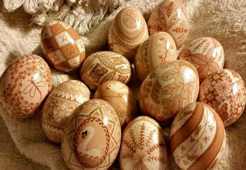 Brown Egg Collectiion