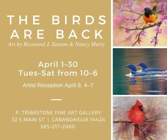 Nancy Murty Exhibition